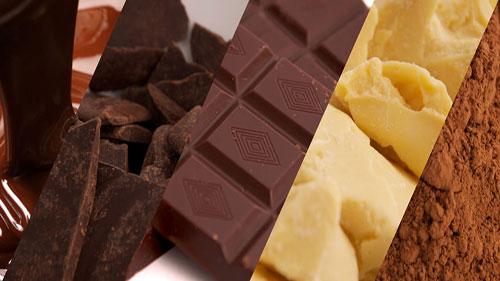 UNOCACE - Productos: Semielaborados de Cacao